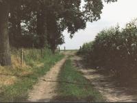 Landschap-3HRS